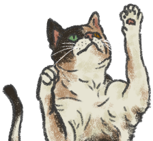 Image of LouLou the cat